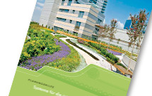 Green roof planning guide